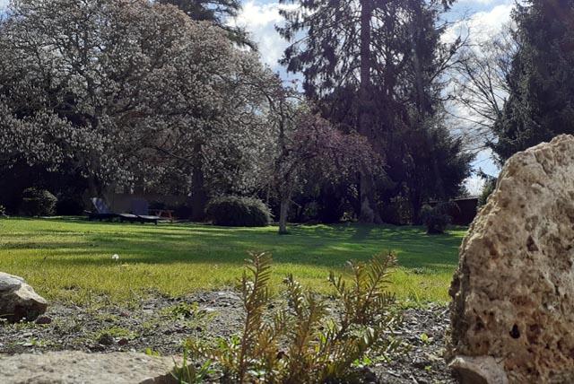Le parc en fleur dans la ville de MATISSE